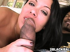 Massive Boobs Milf Sienna West And A Big Black Cock